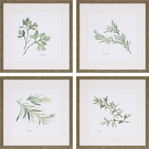 Herbs By: Paschke, 17 x 17 In. Framed Art, Set of Four