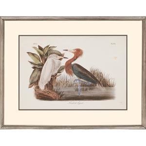 Audubon Egrets: 31 x 24 Deluxe Framed Print, Set of Two