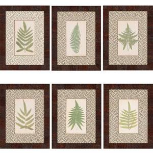 Ferns by Lowes: 16 x 12-Inch Framed Wall Art, Set of Six