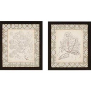 Curtis Botanicals II by Curtis: 29 x 25 Framed Giclee Printed, Set of 2