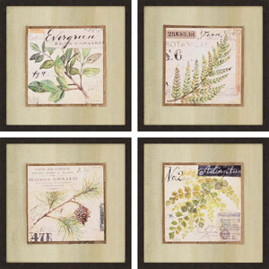 Sketchbook by Staehling: 20 x 20-Inch Wall Art, Set of Four