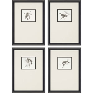 Blackbirds: 25 x 18-Inch Framed Wall Art, Set of Four