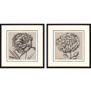 Graphic Floral I by Vision Studio: 26 x 26-Inch Framed Wall Art, Set of Two