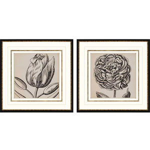 Graphic Floral II by Vision Studio: 26 x 26-Inch Framed Wall Art, Set of Two