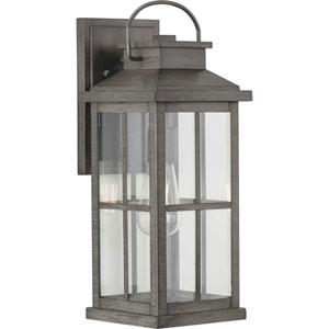Williamston Antique Pewter One-Light Outdoor Wall Lantern