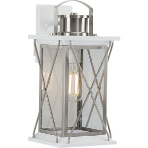 Barlowe Stainless Steel Eight-Inch One-Light Outdoor Wall Sconce with Clear Seeded Shade