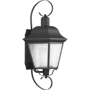 Andover Textured Black 10-Inch One-Light Outdoor Wall Sconce with Clear Water Seeded Shade