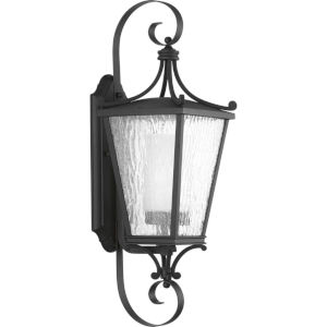 Cadence Textured Black Eight-Inch One-Light Outdoor Wall Sconce with Clear Seeded Water Shade
