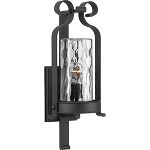 P560074-031: Hermosa Black One-Light Outdoor Wall Sconce
