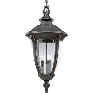 P5520-31:  Meridian Black Three-Light Outdoor Pendant