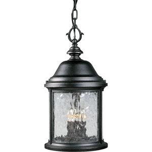 P5550-31:  Ashmore Textured Black Three-Light Outdoor Pendant
