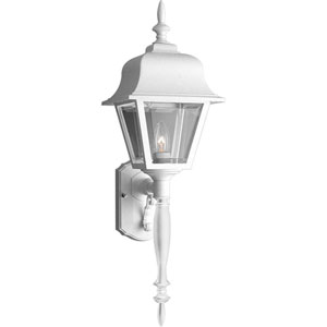 Non-Metallic Incandescent White One-Light Outdoor Wall Sconce with Clear Beveled Acrylic Panels