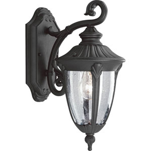 P5820-31:  Meridian Black One-Light Outdoor Wall Lantern