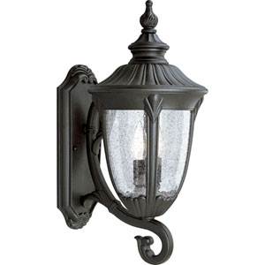 P5823-31:  Meridian Black Two-Light Outdoor Wall Lantern