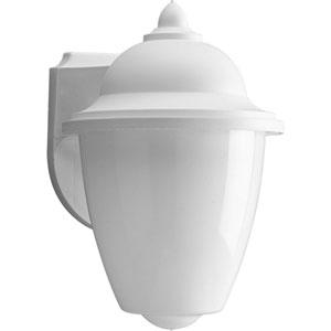 Non-Metallic White One-Light Outdoor Wall Sconce with White Acrylic Globe