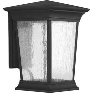 P6069-3130K9 Arrive Black One-Light Energy Star 9-Inch LED Outdoor Wall Lantern
