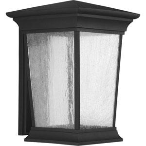 P6076-3130K9 Arrive Black One-Light Energy Star 11-Inch LED Outdoor Wall Lantern