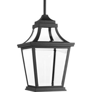 P6526-3130K9 Endorse Black 9-Inch One-Light Energy Star LED Outdoor Pendant