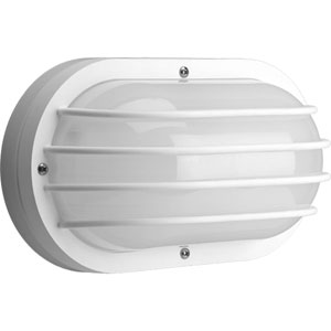 Non-Metallic White 10.62-Inch Two-Light Outdoor Convertible Wall/Ceiling Mount