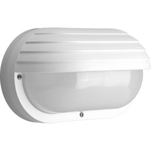 Non-Metallic White Two-Light Outdoor Convertible Wall/Ceiling Mount