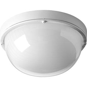 Bulkheads White LED 4-Inch One-Light Wall Sconce