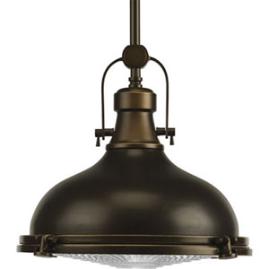 P5188-108:  Fresnel Lens Oil Rubbed Bronze One-Light Pendant