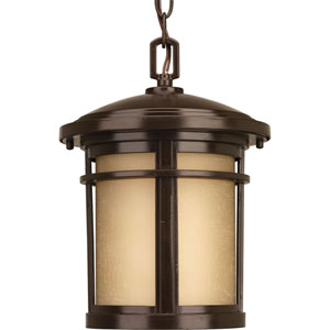 Wish Antique Bronze One-Light Outdoor Pendant