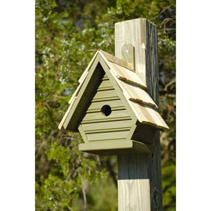 Chick Pinion Green Birdhouse