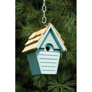 Wren-in-the-wind Blue Eggshell Birdhouse