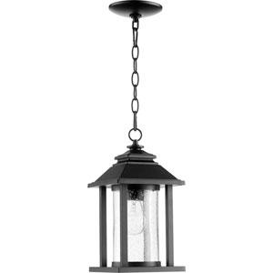 Crusoe Noir One-Light 7-Inch Outdoor Pendant Light