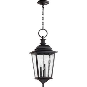 Pavilion Noir Three-Light 12-Inch Outdoor Pendant