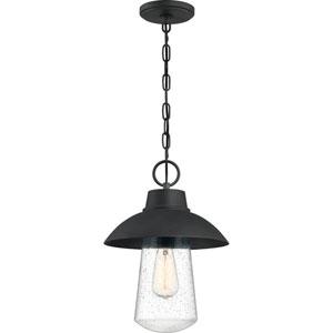 East Bay Mottled Black One-Light Outdoor Pendant