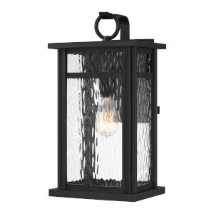 Moira Earth Black Nine-Inch One-Light Outdoor Wall Mount