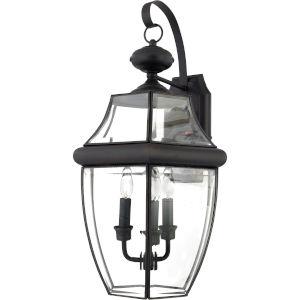 Newbury Outdoor Wall-Mounted Lantern