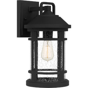 Quincy Earth Black Nine-Inch One-Light Outdoor Wall Mount
