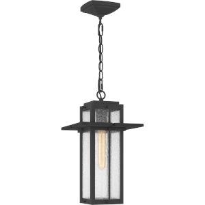 Randall Mottled Black One-Light Outdoor Pendant