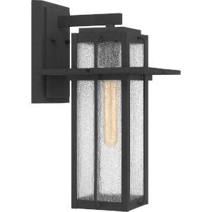 Randall Mottled Black Nine-Inch One-Light Outdoor Wall Mount