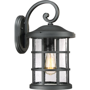 Crusade Earth Black 10-Inch One-Light Outdoor Wall Lantern