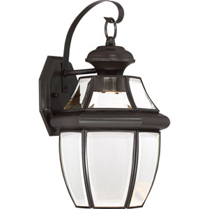 Newbury Clear LED Medici Bronze 8-Inch Outdoor Wall Lantern