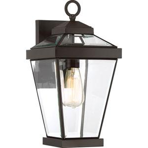 Ravine Western Bronze 8-Inch One-Light Outdoor Wall Lantern