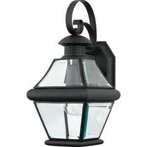Rutledge Mystic Black One-Light Outdoor Wall Light