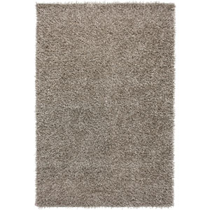 Kempton Rectangle: 5 Ft. x 7 Ft. Silver Rug