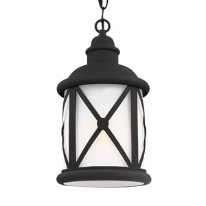 Lakeview Black Energy Star LED Outdoor Pendant
