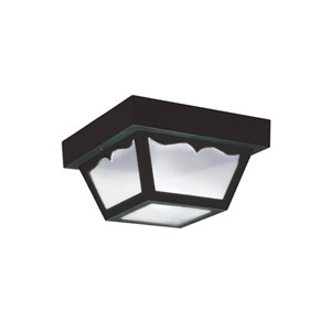Outdoor Ceiling Clear Energy Star Two-Light LED Outdoor Ceiling Flush Mount