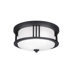 Crowell Black Energy Star Two-Light LED Outdoor Ceiling Flush Mount