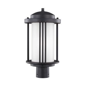 Crowell Black Energy Star LED Outdoor Post Lantern
