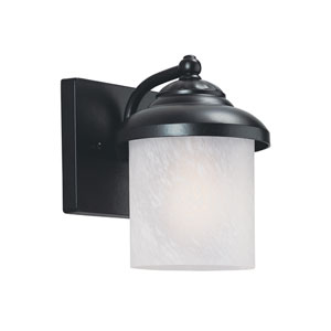Yorktown Black Energy Star Dusk to Dawn LED Outdoor Wall Lantern