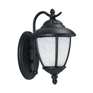 Yorktown Forged Iron Energy Star Eight-Inch LED Outdoor Wall Lantern