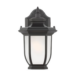 Childress Black One-Light Outdoor Wall Sconce with Satin Etched Shade Energy Star