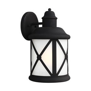 Lakeview Black Energy Star LED Outdoor Wall Lantern with Etched Seeded Glass